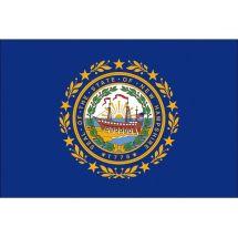 Fahne Bundesstaat New Hampshire USA