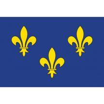 Fahne Region Île-de-France Frankreich