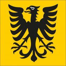 Gemeindefahne Vivisbachbezirk
