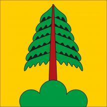 Gemeindefahne Bezirk Seewis