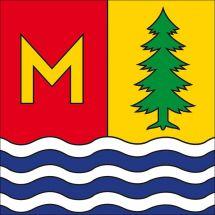 Gemeindefahne 8885 Mols