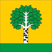 Gemeindefahne 1699 Bouloz