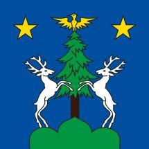 Gemeindefahne 1973 Nax