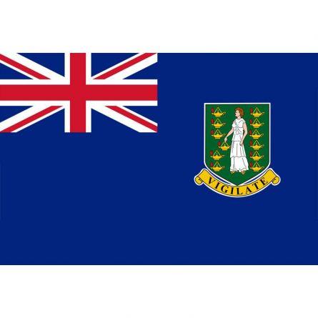 Fahne Region Britische Jungferninseln Vereinigtes Königreich