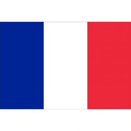 Drapeau national France