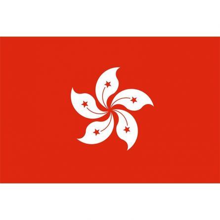 Fahne Gebiet Hongkong China