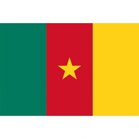 Drapeau national Cameroun