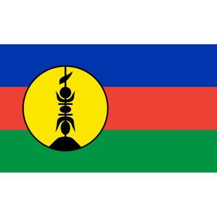 Fahne Gebiet Neukaledonien Frankreich
