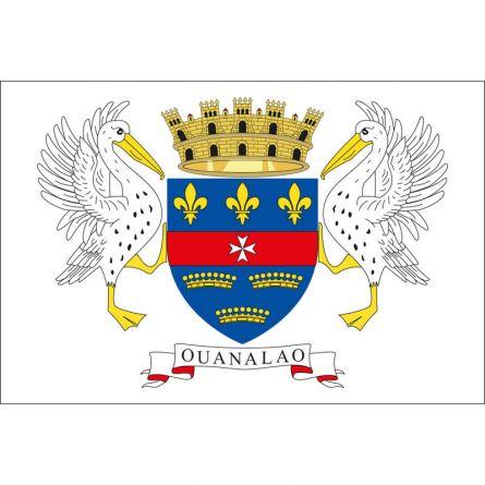 Fahne Gebiet St. Barthélemy Frankreich