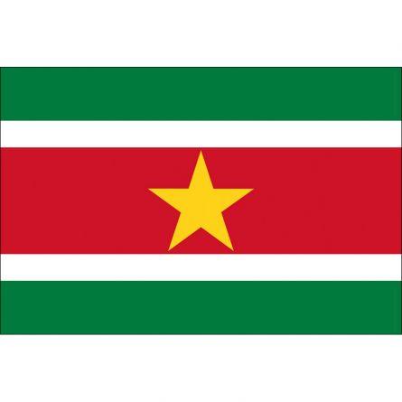Länderfahne Suriname