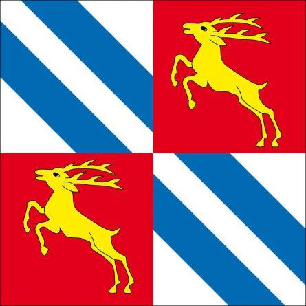 Gemeindefahne 1895 Vionnaz