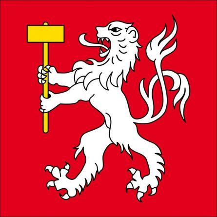 Gemeindefahne 1920 Martigny