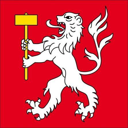Gemeindefahne 1921 Martigny-Combes