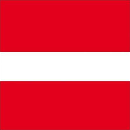 Gemeindefahne 8363 Bichelsee-Balterswil