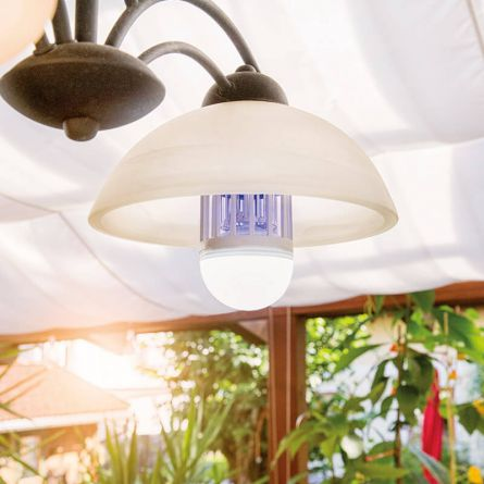 Lichtfalle & LED Leuchtmittel 2 in 1