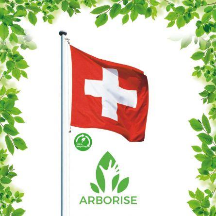 Fahnenmasten-Set «Arborise» inkl. ECO-Fahne Aluminium 8 m