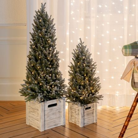LED Tanne «Snow» mit Holztopf, inkl. Beleuchtung