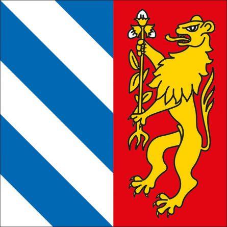 Gemeindefahne 8773 Haslen GL altes Wappen