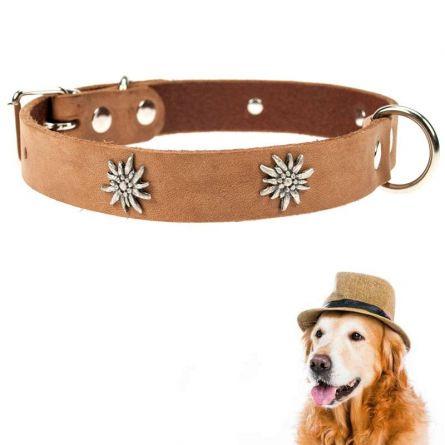 Hundehalsband «Edelweiss»
